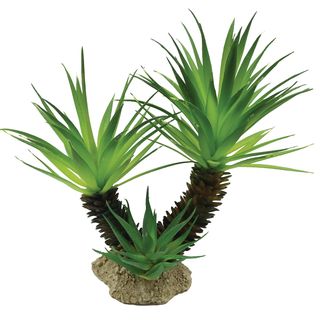 Mad Lizard 22.5Cm Cactus