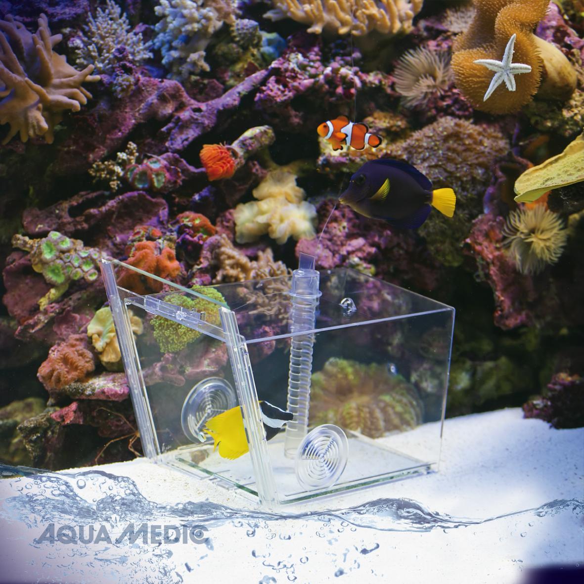 Aquamedic Fish Trap 27x17x17cm