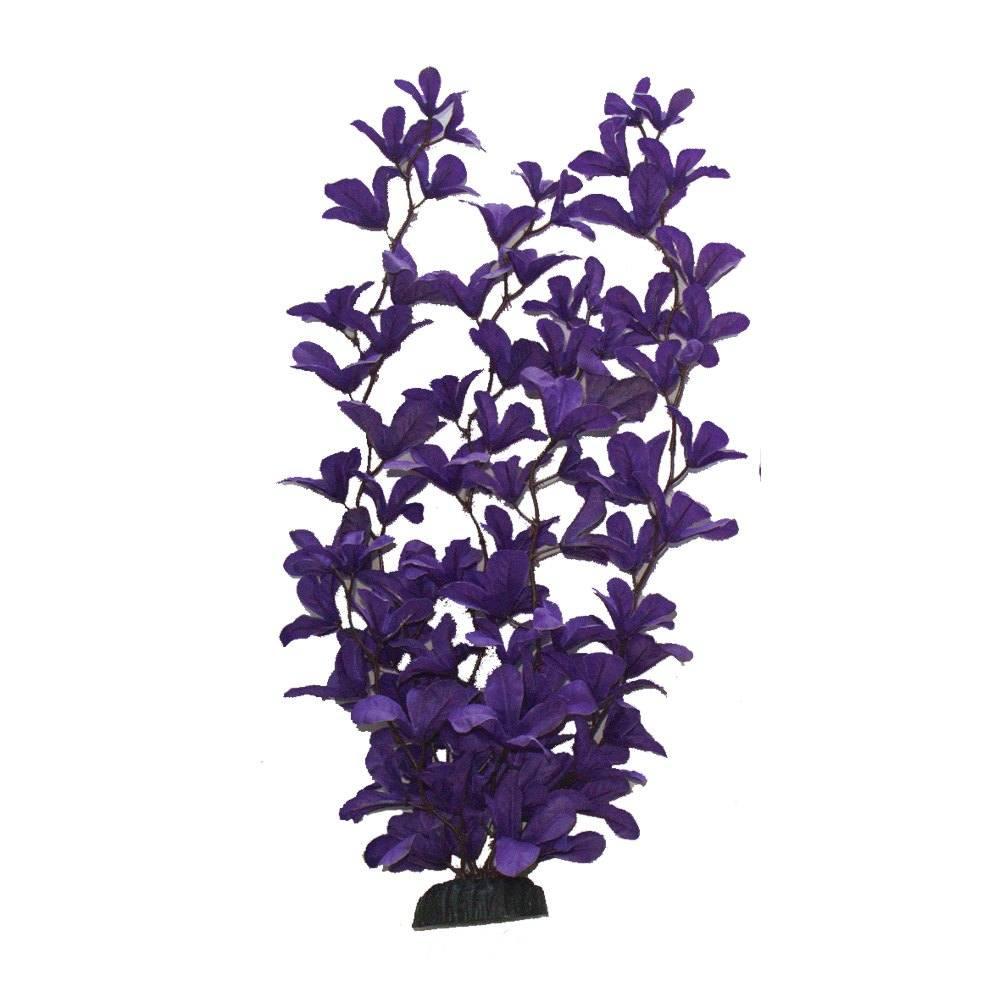 Purple Rotala Silk
