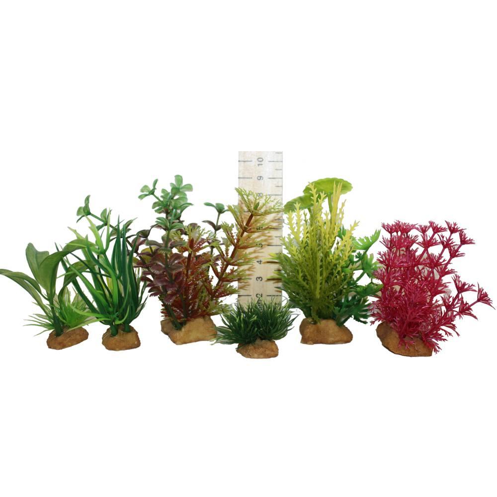 Kamishi miniature plant tub 5